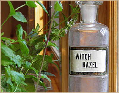 Formulating with Witch Hazel